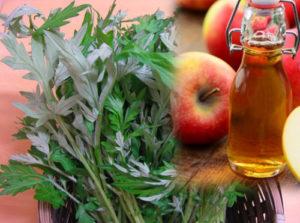 Trị hôi nách bằng lá ngải cứu và dấm táo