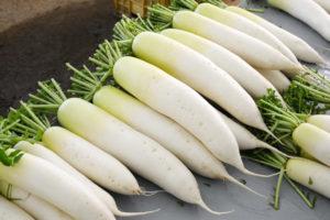 Tác dụng của củ cải trắng trong trị hôi nách
