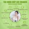 Tác dụng của diệp lục collagen Powder