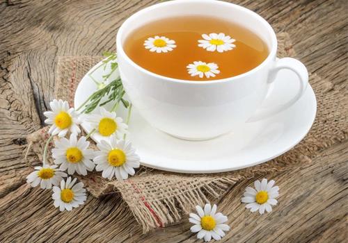 Trà hoa cúc thức uống trị đau dạ dày